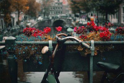 Amsterdam by Nick Scheerbart on Unsplash