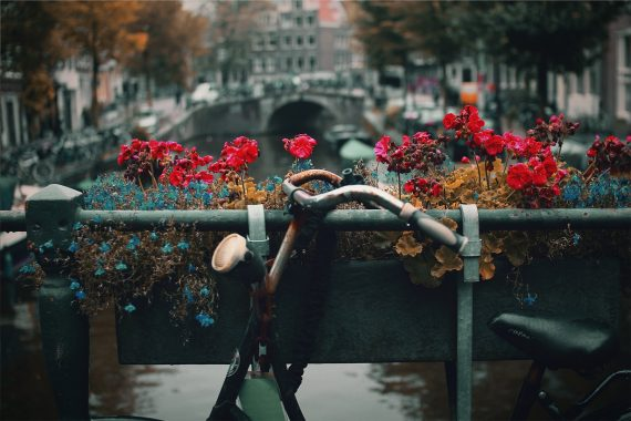 Amsterdam by Nick Scheerbart on Unsplash