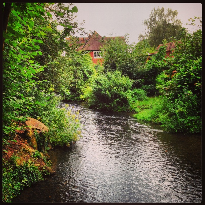 River Tillingbourne - Caption taken by me